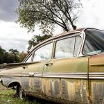 A love affair – Leaves & Rust