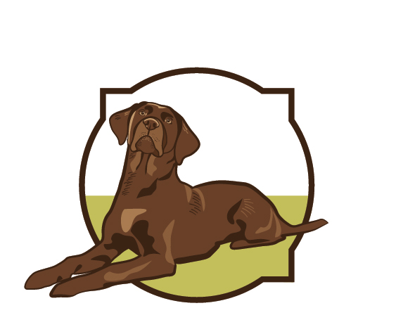 ChocolateLab_Illustration